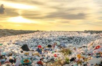 海洋プラスチックは有効活用可能なのか ~美しい資源循環の輪を描くために~